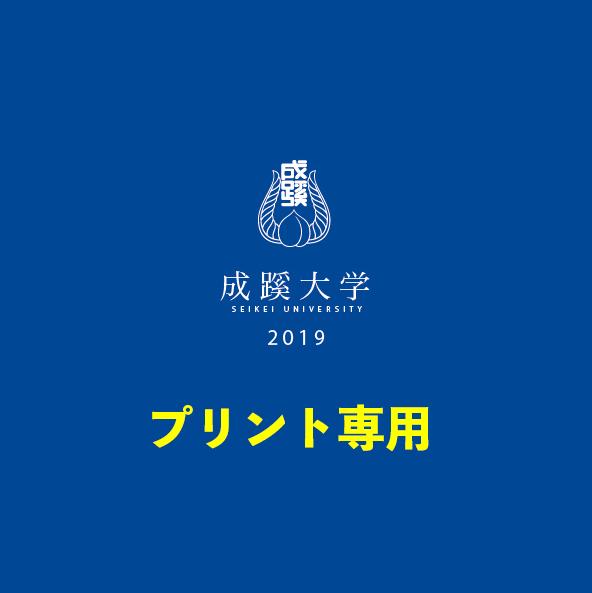 (20年卒)2019年版印刷用アルバムPDFダウンロードのイメージ